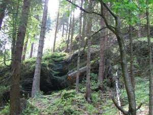 Wanderung mit Hun Gossdorf