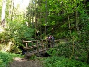 Wanderung mit Hun Hockstein Hohnstein