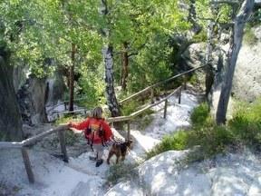 Wanderung mit Hund  Prossen