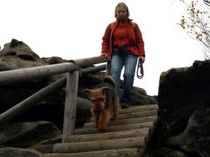 Wanderung mit Hund Gohrisch und Papststein